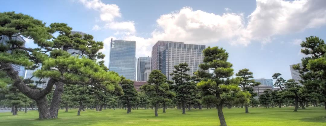 Rejsetips Tokyo